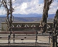 """A Bench, Three Trees, and a Mountain"""