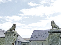 """The Guardian Dogs at Malahide Castle"""