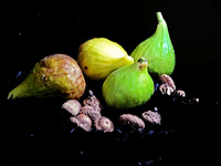 """Figs and Acorns"""